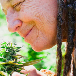 How To Talk To Your Parents (and your grandparents) About Using Cannabis