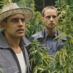 13 Stoner Movies You Probably Forgot About