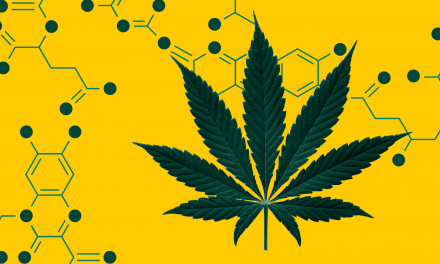 Meet The Cannabinoids: A Fairly Thorough Introduction To What's Inside Your Weed